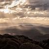 Tasmanian Winter Light