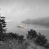 A Splash of Brightness in the Fog