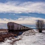 Taking a Break Under the Big Prairie Skies